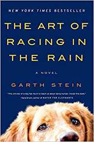 art of racing in the rain.jpg