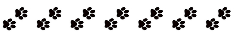 dog paw print border