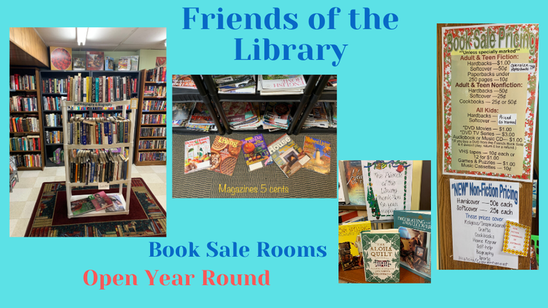 Friends of the Library Carousel.png