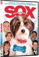 sox the amazing dog